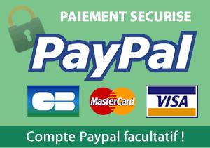 Payement en ligne sécurisé