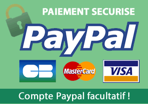 Pay secure online